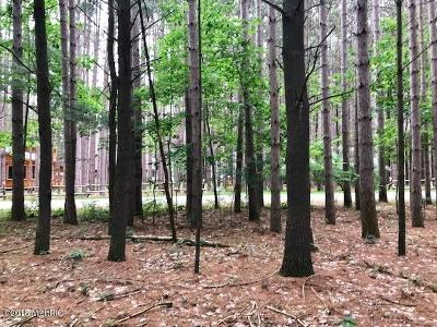 Mecosta County Residential Lots & Land For Sale: 7605 River Ridge Road