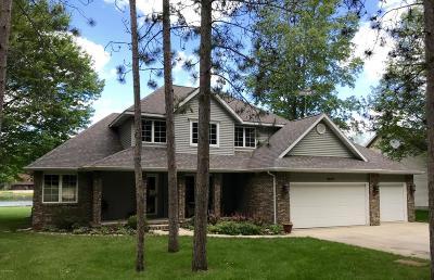 Isabella County, Mecosta County, Montcalm County, Newaygo County, Osceola County Single Family Home For Sale: 9208 Main Street