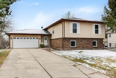 Grand Rapids Single Family Home For Sale: 2600 Heathcliff Drive SE