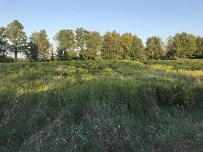 Hillsdale County Residential Lots & Land For Sale: N Bunn Road