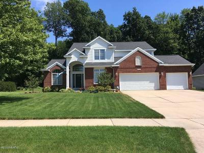 Rockford MI Single Family Home For Sale: $395,000