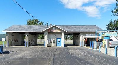Berrien County Commercial For Sale: 6817 Us-12