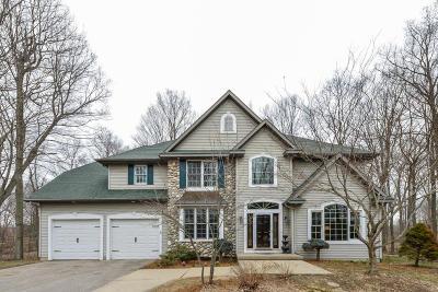 Middleville Single Family Home For Sale: 6581 Riverside Lane