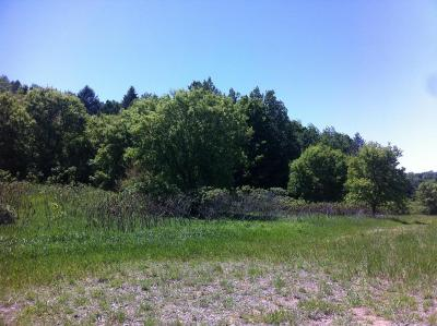 Oceana County Residential Lots & Land For Sale: Vl State Street