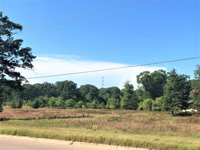 Ludington Residential Lots & Land For Sale: 6500 W Bryant Road