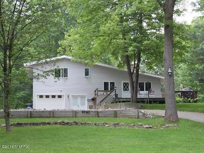 Mecosta County Single Family Home For Sale: 9780 Pere Marquette Drive