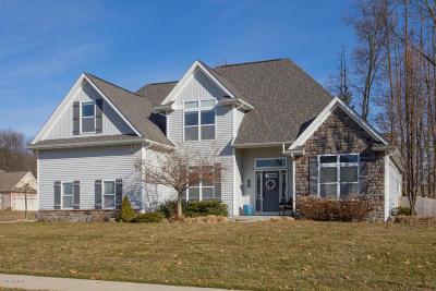 Kalamazoo Single Family Home For Sale: 7692 Northport Avenue