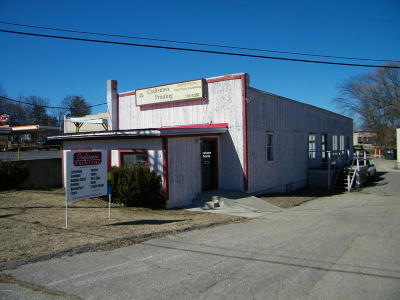 Big Rapids Commercial For Sale: 115 E Pine Street