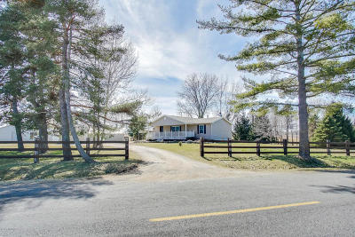 Sawyer Single Family Home For Sale: 4574 Hanover Road