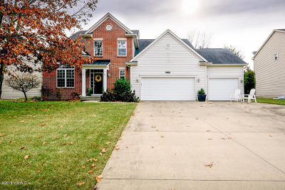 Kalamazoo Single Family Home For Sale: 6451 Belgian Avenue