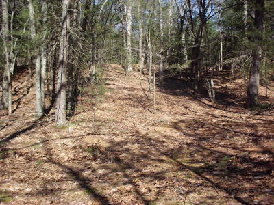 Pentwater MI Residential Lots & Land For Sale: $49,900