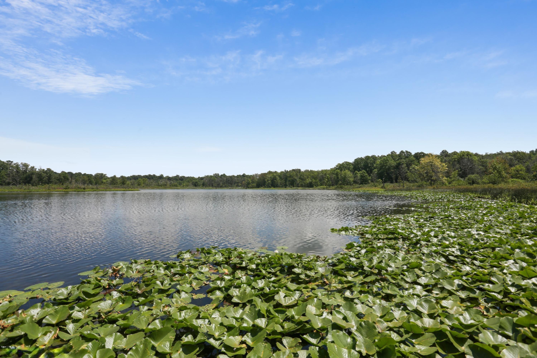14 9 acres in Buchanan for $299,000