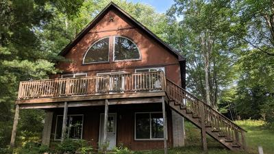 Clare County Single Family Home For Sale: 385 Lake Shore Drive