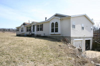 Dowling Single Family Home For Sale: 11607 S M-37 Highway