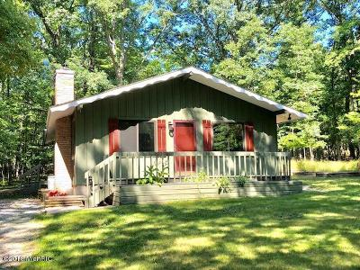 Canadian Lakes MI Single Family Home For Sale: $89,900