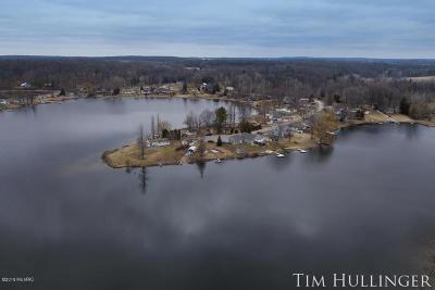 Sand Lake MI Single Family Home For Sale: $275,000