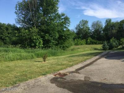 Hudsonville Residential Lots & Land For Sale: 5083 Big Bass Drive