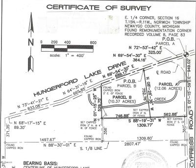 Big Rapids Residential Lots & Land For Sale: E Hungerford Lake Drive #Parcel B