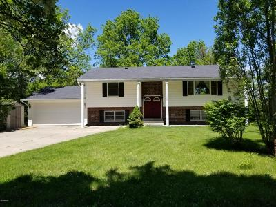 Big Rapids Single Family Home For Sale: 910 Woodward