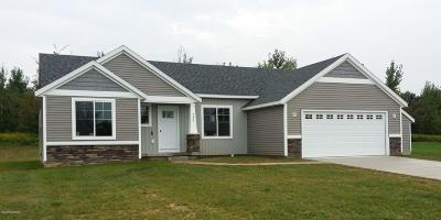 Big Rapids Single Family Home For Sale: 4 Trillium Lane #4