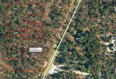Pentwater Residential Lots & Land For Sale: Us31(Bus)