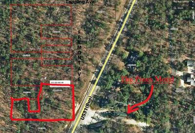 Oceana County Residential Lots & Land For Sale: Us31(Bus)