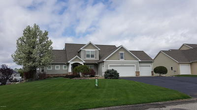 Hudsonville Single Family Home For Sale: 5675 16th