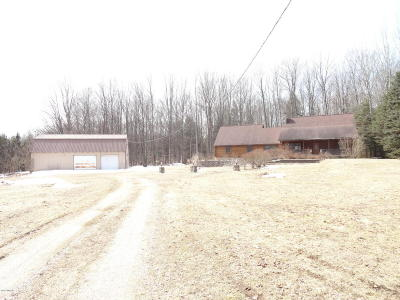 Manistee County Single Family Home For Sale: 3830 Milarch Road