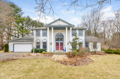 Grand Haven, Spring Lake, Ferrysburg Single Family Home For Sale: 16096 Delta View Drive