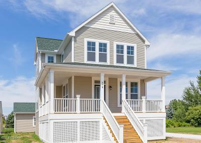 Douglas Single Family Home For Sale: 480 E Summer Grove Drive