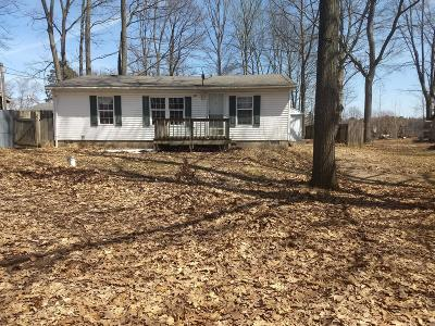Clare County Single Family Home For Sale: 551 Woodland