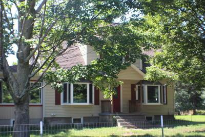 Ludington Single Family Home For Sale: 941 N Dennis Road