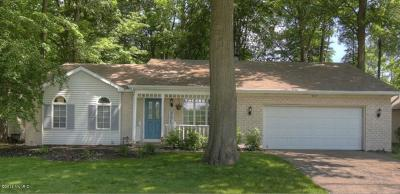 Hudsonville Single Family Home For Sale: 4487 Glen Hollow Drive