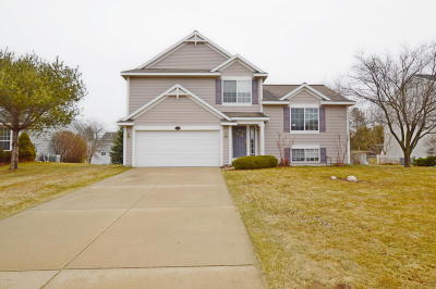 Grand Haven, Spring Lake, Ferrysburg Single Family Home For Sale: 13234 Willowvale Drive