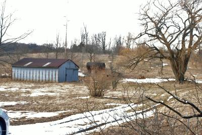 Hart MI Residential Lots & Land For Sale: $99,000