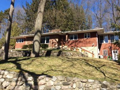 Lowell Single Family Home For Sale: 10505 Fulton Street E