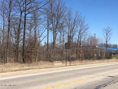 Lakeview MI Residential Lots & Land For Sale: $74,900