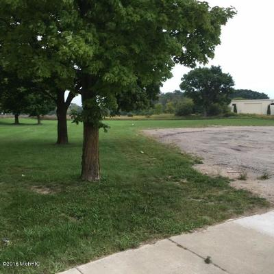 Lakeview MI Residential Lots & Land For Sale: $94,900