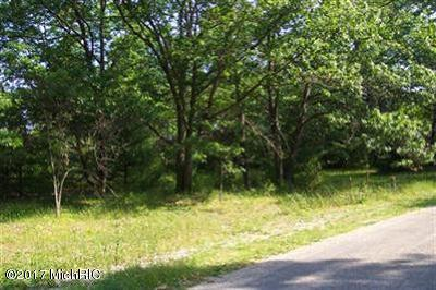 Muskegon Residential Lots & Land For Sale: E River Road