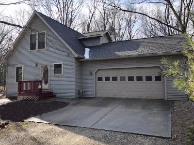 Canadian Lakes MI Single Family Home Active Contingent: $139,000