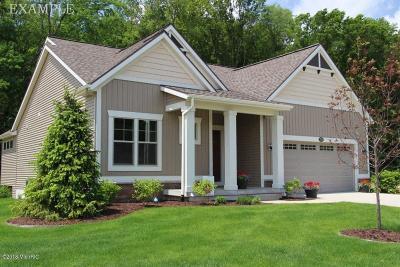Condo/Townhouse For Sale: 3177 Braeburn Court #20
