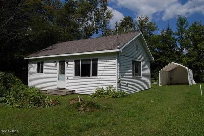 Rodney MI Single Family Home For Sale: $68,900