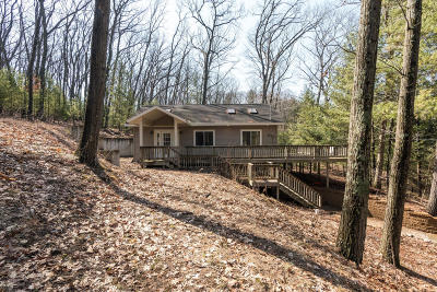 Isabella County, Mecosta County, Montcalm County, Newaygo County, Osceola County Single Family Home For Sale: 4934 Outing Drive