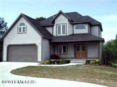 Scottville Single Family Home For Sale: 750 E Conrad