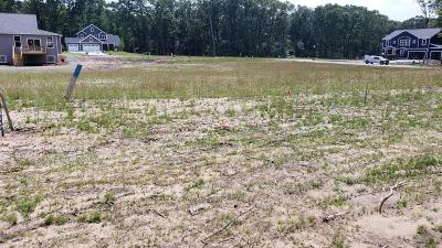 Holland, West Olive Residential Lots & Land For Sale: 608 Fern Gully Drive #38