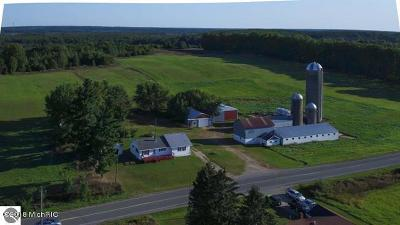 Manistee County Single Family Home For Sale: 22124 Thirteen Road