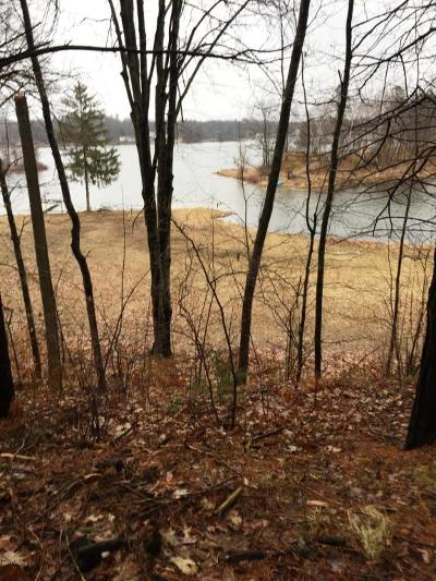 Mecosta County Residential Lots & Land For Sale: 8888 Hidden Harbor Drive