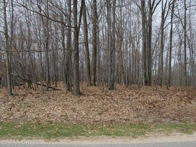 Isabella County, Mecosta County, Montcalm County, Newaygo County, Osceola County Residential Lots & Land For Sale: 9031 N Royal #3