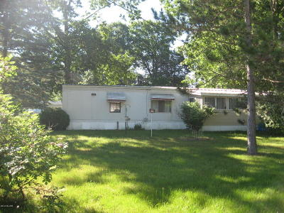 Mecosta MI Single Family Home For Sale: $45,900