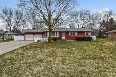 Jenison Single Family Home For Sale: 7802 Hearthway Avenue